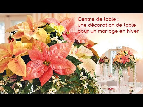 Idée déco pour les fleuristes : un centre de table à base de poinsettias