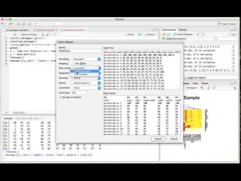 Make a Heatmap on R Studio