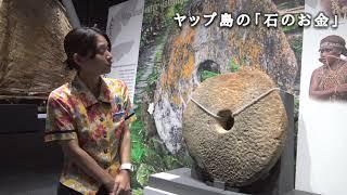 ヤップ島の「石の??」 ヤップ島 検索動画 20