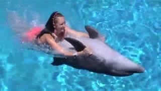 В басейні з дельфіном. In the pool with a dolphin