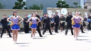 早慶応援④六大学応援チアリーディング|早慶のハイクラスなチアダンス!