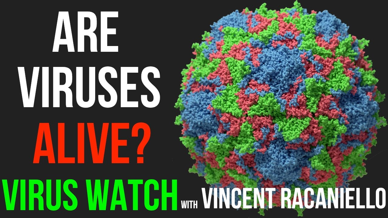 viruses are alive Viruses are infectious, tiny and nasty but are they alive not really, although it depends on what your definition of alive is, two infectious disease doctors told live science living beings, such as plants and animals, contain cellular machinery that allows them to self-replicate in contrast.