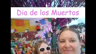 Day of the Dead Festival in Mexico! 💀 Carnival Fantasy Cruise Vlog [ep10]