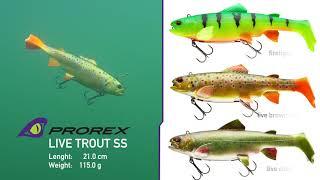 Daiwa Prorex Live Trout Swimbait 250 DF Live Char Forelle Gummiköder NEU