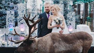 Свадьба зимой, видео обращение