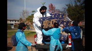 Gobierno ha repartido 277.842 canastas familiares a la fecha en ocho regiones del país