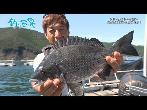 【釣り百景】#307 チヌ・筏釣りへの誘い 尾鷲湾に潜む大物を狙う!