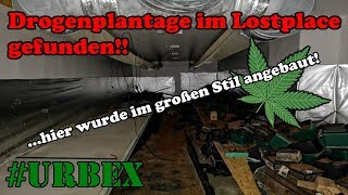 Dr😮gen-Plantage im Lostplace! | #Urbex