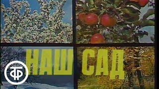 Наш сад. В зимнем саду (1978)