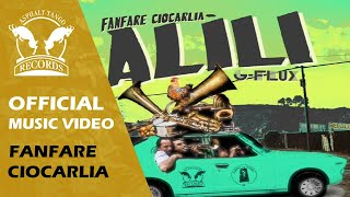 ALILI GOES CUMBIA! Fanfare Ciocarlia vs G-Flux from Mexico!