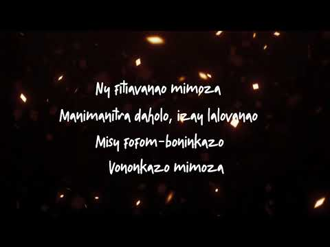 Dama - MIMOZA [ parole ] │by lyrics mada 2019