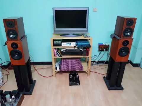 Musical Paradise MP 301 MK3 Eng Wo2
