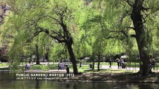 PUBLIC GARDEN / BOSTON 2012