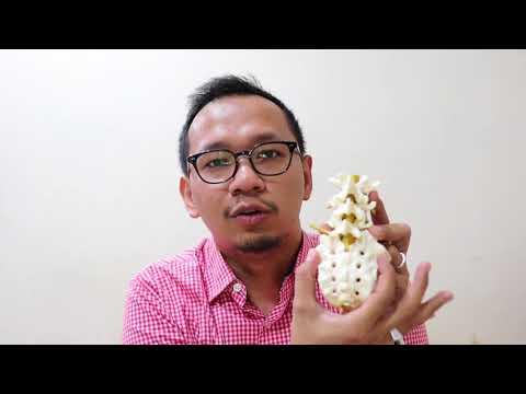 #neurovlog 6 : Kenapa kita sakit pinggang ?