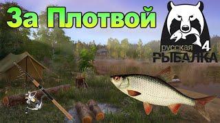 Витёк на Рыбалке ► Русская рыбалка 4 ► Ловим Жирную Плотву