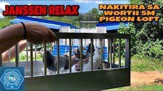 NAKITIRA SA WORTH 5M PIGEON LOFT ATING MGA KALAPATI!!