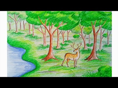 How to draw forest scene Step by step (very easy)