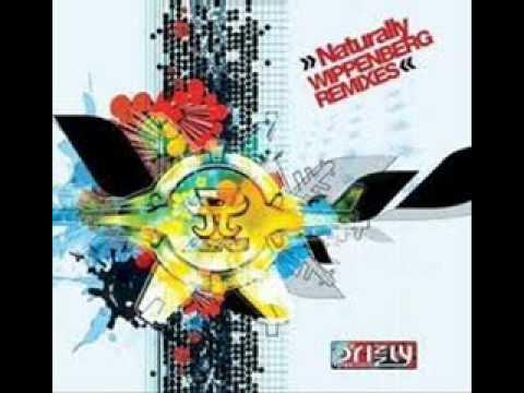 Ayumi Hamasaki Naturally WIPPENBERG Remix