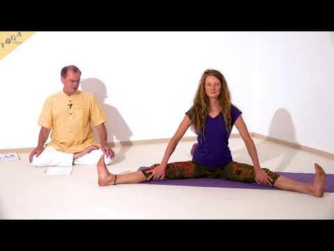 vorbeuge-mit-gespreizten-beinen---yoga-asanalexikon