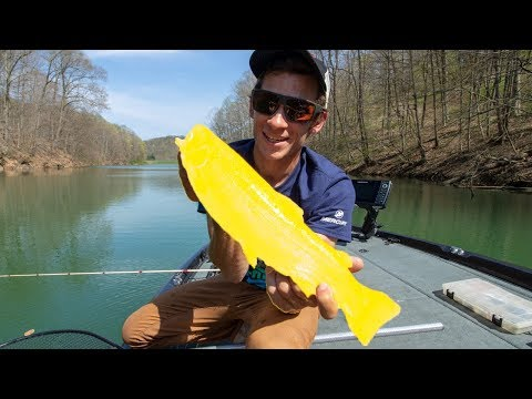 Catching STRANGE Genetically Modified Fish In The Mountains Of West Virginia