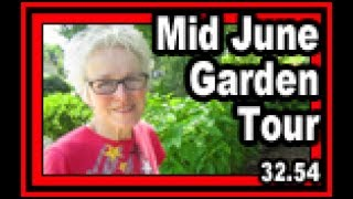 Mid June Garden Tour - Wisconsin Garden Video Blog 768