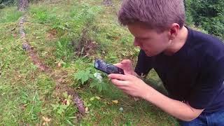 Kasvio: Valokuvaaminen
