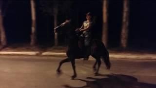 Cavalgada do meu aniversário *14 de maio*