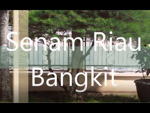 Senam Riau Bangkit -cover #sman8pekanbaru