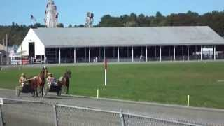 Parimutuel Racing ( Part-1)