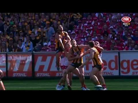 2014 AFL Grand Final Recall: Hawks v Swans