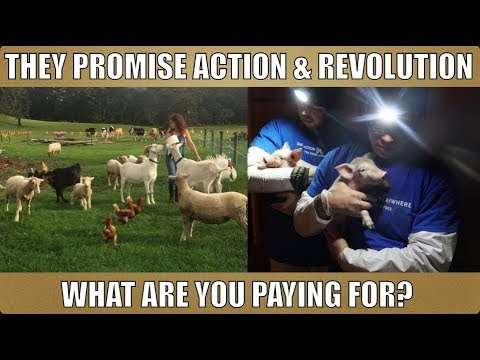 """Donations for """"Rescue"""" and """"Revolution"""": Vegan """"Charity""""."""