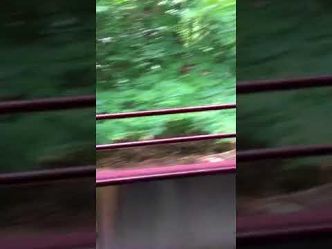 Conway Scenic Railroad Notch train ride part 3
