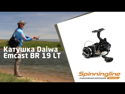 Daiwa 20 GS BR LT Free Caster