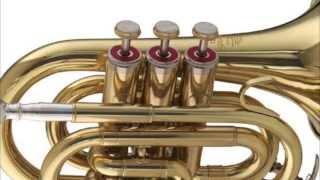 Vivaldi - Concerto for 2 Trumpets in C Major, RV 537