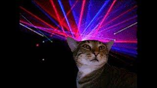 Кошки танцуют под музыку ! Кошачья диСкотека !