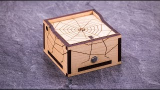 Einstein's Spider Box Puzzle