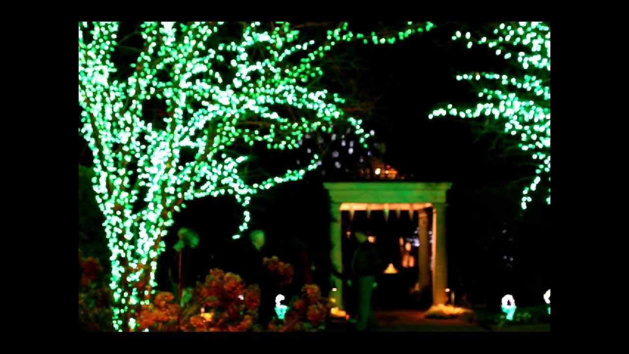 Daniel stowe botanical garden holiday lights 12 17 2011 - Daniel stowe botanical garden christmas ...