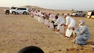 How Dog's race was conducted in Dubai.