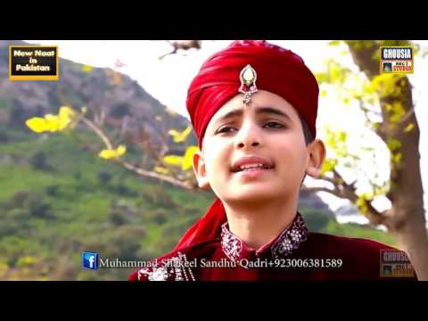 Shakeel Sandhu Qadri, New Rabi Ul Awal Beautifull Naat sharif   New Naat 2017via torchbrowser com