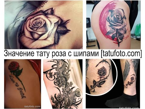 Значение тату роза с шипами - факты и фото для сайта Tatufoto.com