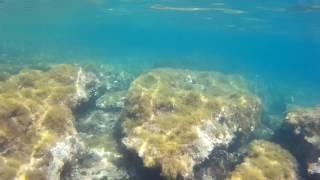 Mallorca Snorkeling