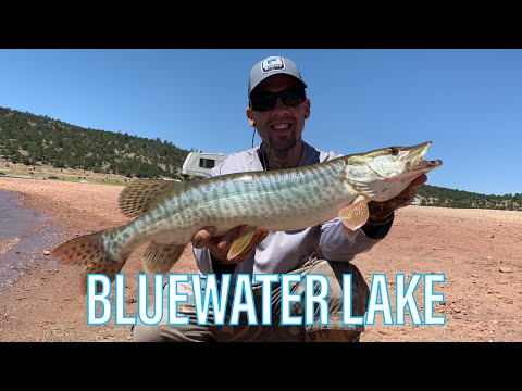 Tiger Muskie Fishing,BlueWater Lake New Mexico
