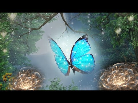 Peaceful Music, Relaxing Music, Instrumental Music, Celtic Music 'Magical Forest' '