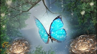 Peaceful Music, Relaxing Music, Instrumental Music, Celtic Music Magical Forest