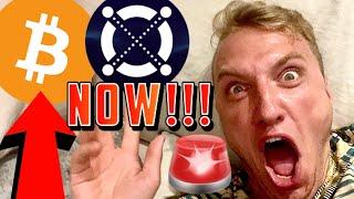 BITCOIN & ELROND!!!!!! I AM SHAKING!!!!!!!!!!!!!