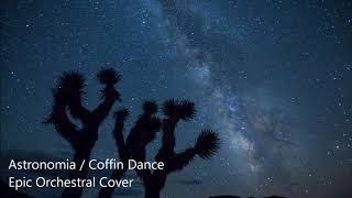 Download song Coffin Dance / Astronomia - Epic Orchestral Cover