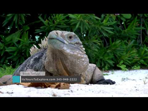 Discover the Sister Islands - Little Cayman