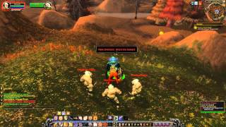 Quest 358: Honor and Strength (WoW, human, paladin)