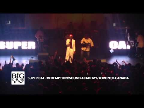 Super Cat - Toronto July 18 2014 - Pt. 4