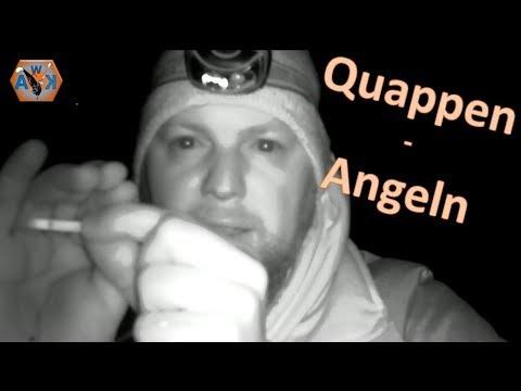 Erster Versuch auf QUAPPE 2019 / die AUFGABE